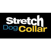 Stretch Leashes and Collars